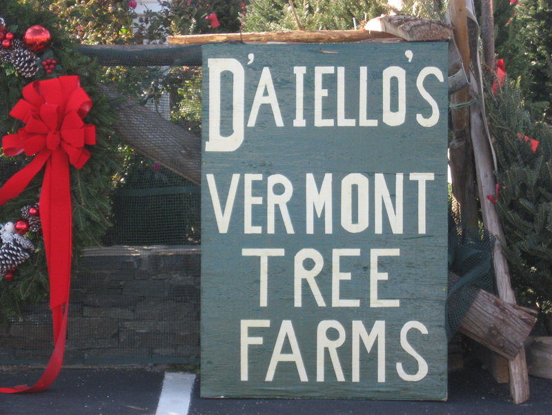 D'Aiello's Vermont Tree Farm