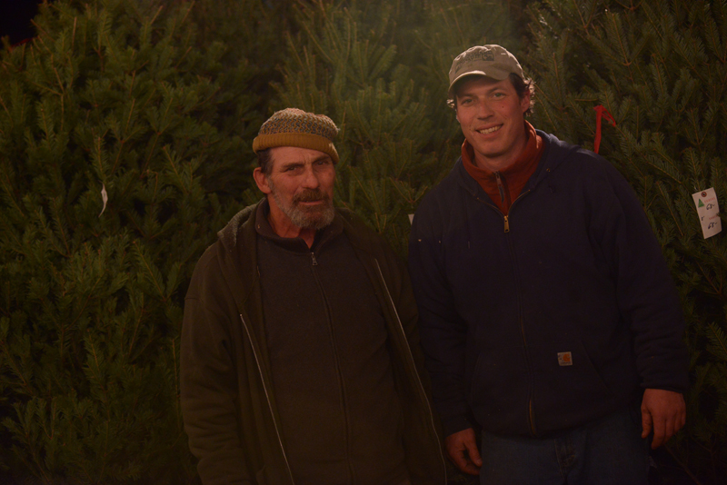 Family Owned Christmas Tree Farm Wholesale Trees